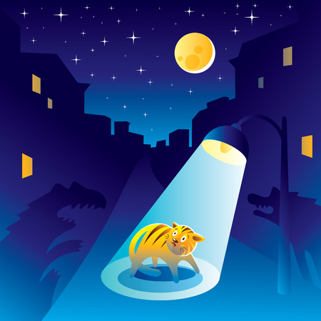 Frightened kitten at the night in the city under the lantern light.
