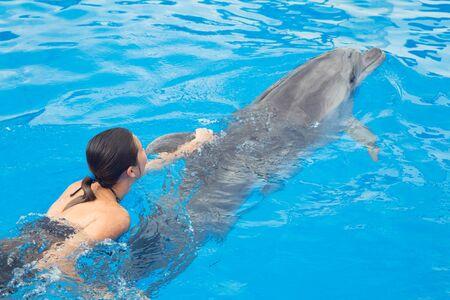 Fröhliches schönes junges Mädchen lacht und schwimmt mit Delfinen im blauen Schwimmbad an einem sonnigen Tag Standard-Bild