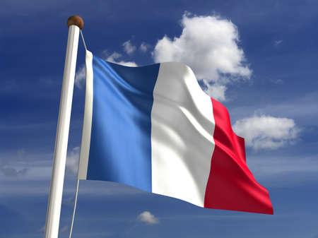 france  flag: 3D France flag