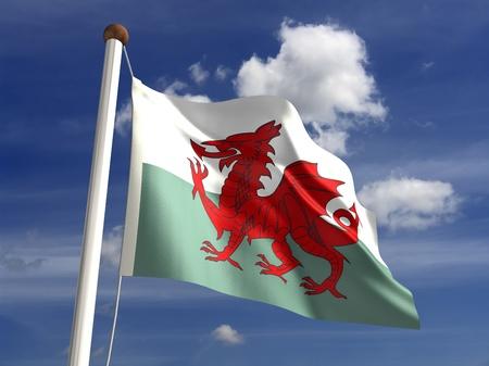 welsh flag: 3D bandiera del Galles Archivio Fotografico