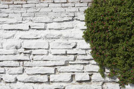 White Stone Wall photo