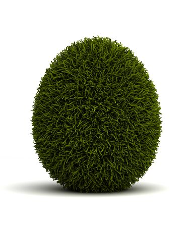 Grassed easter egg on white background  computer generated image  photo