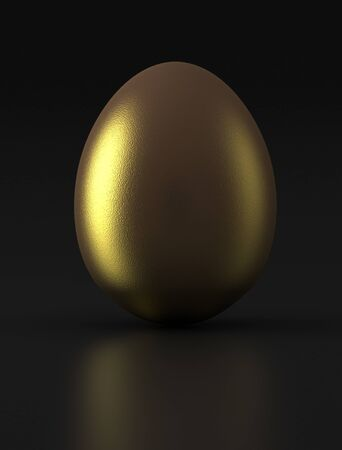 Golden Egg on black background  Computer generated image  photo