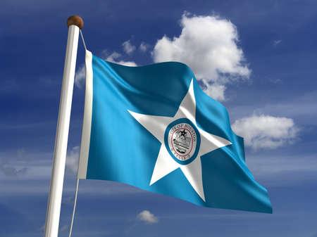 houston flag: Houston Texas flag USA  isolated with clipping path