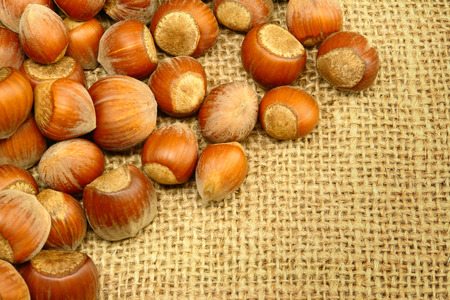 sackcloth: Hazelnuts on Sackcloth Stock Photo