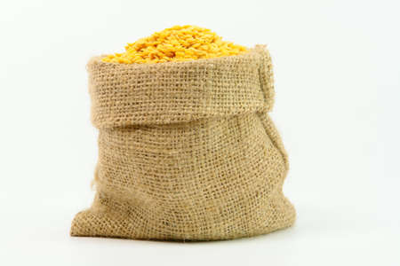 Yellow Lentils in gunny bag on white background