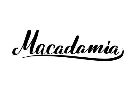 Inspirational handwritten brush lettering . Vector calligraphy illustration Vector Illustration
