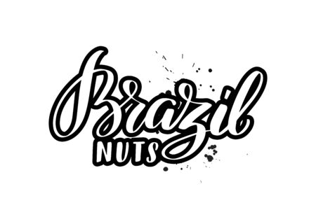 Inspirational handwritten brush lettering Brazil nuts. Vector calligraphy illustration isolated on white background. Typography for banners, badges, postcard, t-shirt, prints, posters.