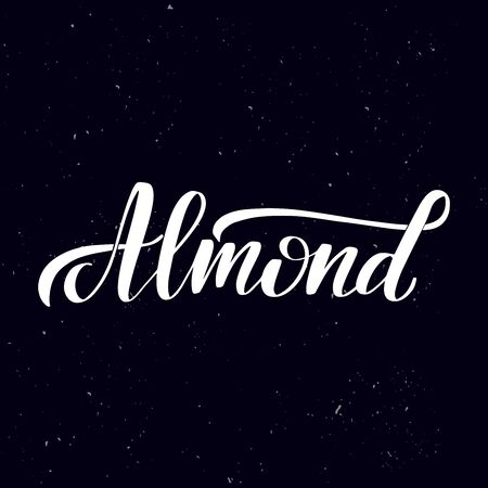 Chalkboard blackboard lettering almond. Handwritten calligraphy text, chalk on a blackboard, vector illustration. Greetings for badge, icon. 向量圖像