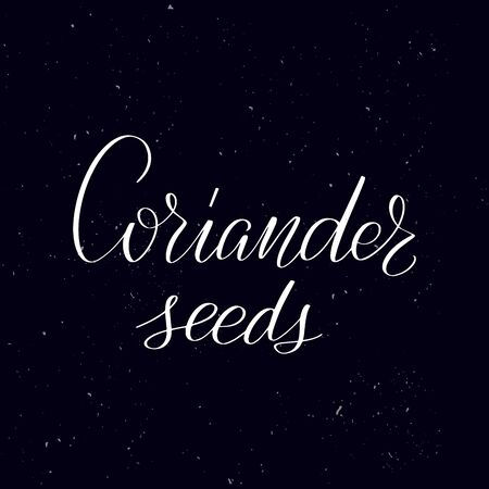 Chalkboard blackboard lettering Coriander seeds. Handwritten calligraphy text, chalk on a blackboard, vector illustration. Greetings for logotype, badge, icon.  イラスト・ベクター素材