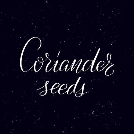 Chalkboard blackboard lettering Coriander seeds. Handwritten calligraphy text, chalk on a blackboard, vector illustration. Greetings for logotype, badge, icon. Ilustração