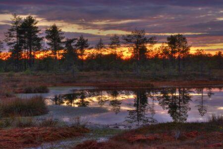 Autumn sunrise on the most beautiful bogs of Estonia