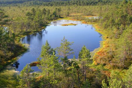 big deep lake in the middle of a bog