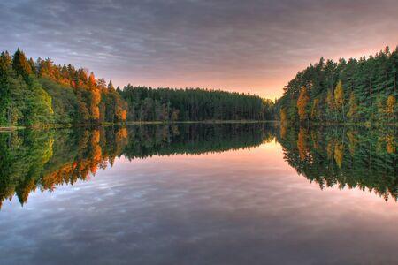 Colorful autumn wood at lake in Estonia photo