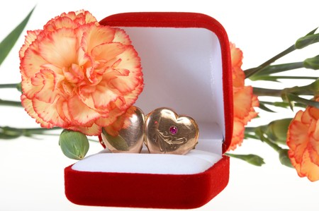 Beautiful carnation and red jewel box with hearts