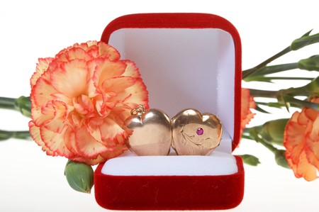 Beautiful carnation and red jewel box with hearts photo