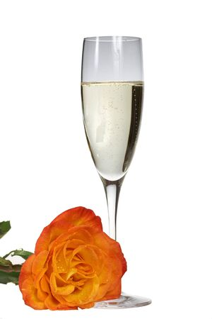 Champagne and Yellow Rose Stock Photo