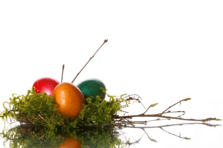 coloured easter eggs in a jack from a moss and branches photo