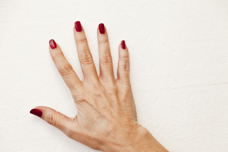 Five fingers on a hand on a white background photo