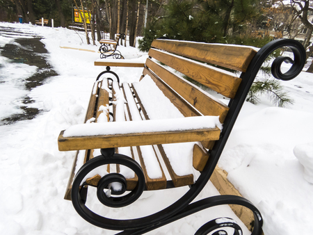 The bench in snow in country park waits for people photo