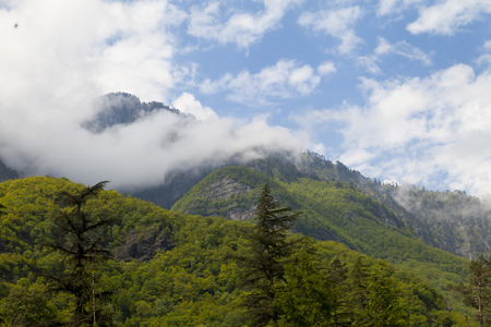 Mountains in the woods and snow are surrounded with clouds photo