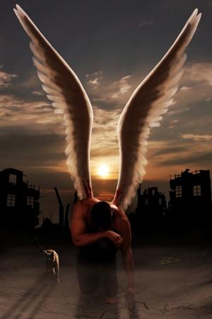 ali angelo: Angel, scese a terra