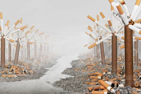 Landscape of cigars and cigarettes Stock Photo
