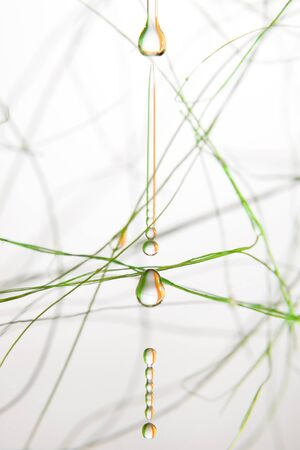 fluidity: Falling drops on a white background Stock Photo