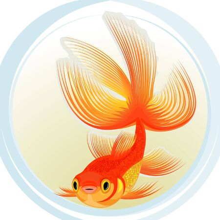 Gold small fish in the stylised aquarium