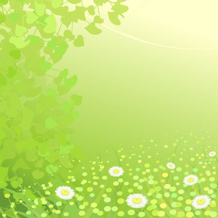 Gentle green background with camomiles on a wood edge   Illustration