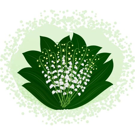 Gentle bouquet of lilies of the valley Stock Photo