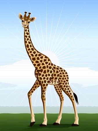 Harmonic giraffe against the stylized landscape Stock Vector - 7257674