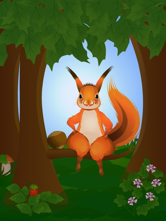 red squirrel: Cartoon squirrel in the wood, having a rest on a tree branch