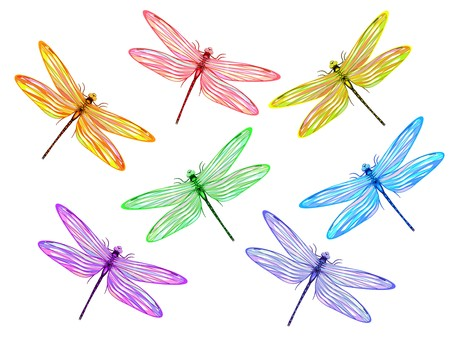 dragonfly wing: Set from seven multicolored fantasy dragonflies