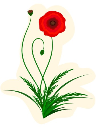 The stylized red poppy on a white background Stock Vector - 7257627