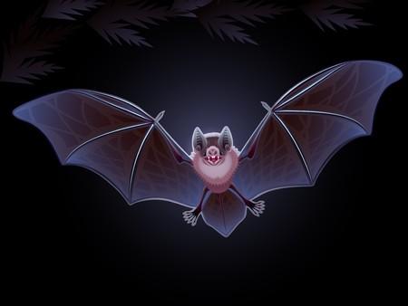 The stylized vampire bat on a dark background Illustration