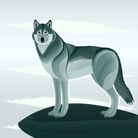 Grey wolf against the stylized landscape