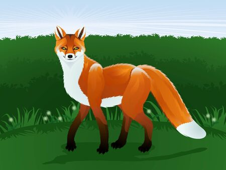 The stylized red fox against the stylized landscape