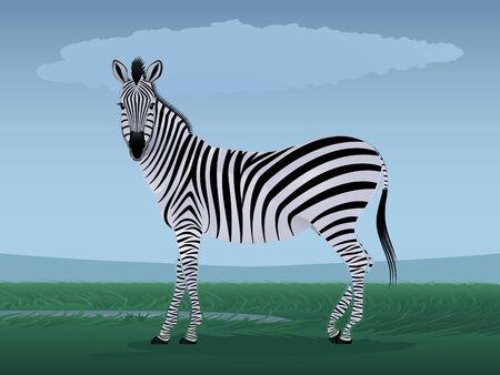 Graceful zebra against the stylized landscape
