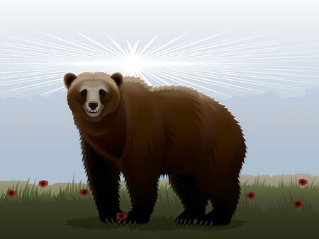 Russian brown bear against the stylized landscape Illustration