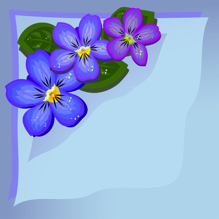 violets: Gentle bluish background with three multicolored    violets