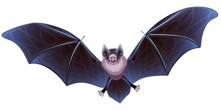 menacing: The stylized vampire bat on a white background Stock Photo