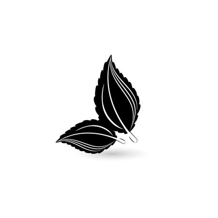 Isolated black leaf. Element for design. Vector illustration