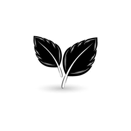 Isolated black leaf. Element for design. Illustration