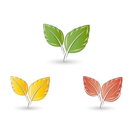 Set of leaves. Element for design. Vector illustration