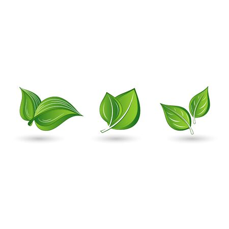 Set of abstract isolated green leaves. Element for design.