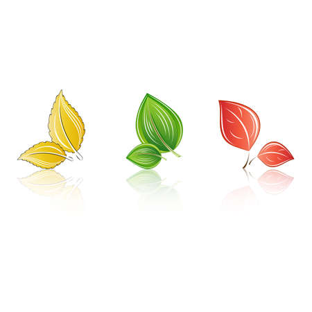 Set of abstract isolated leaves. Element for design.