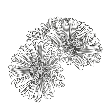 Abstract hand-drawn flower chamomile. Element for design. Vector illustration.  イラスト・ベクター素材
