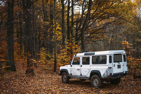 White offroad car staning in the forest in august