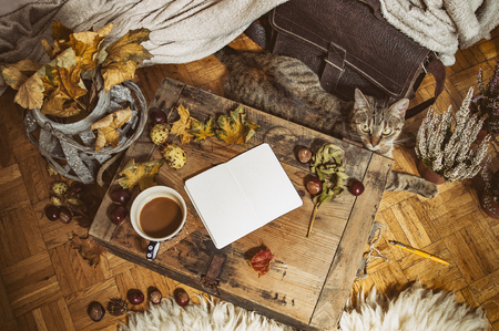 Relaxing autumn day at home with coffee and blank notebook for copyspace in warm coziness scandinavian hygge style